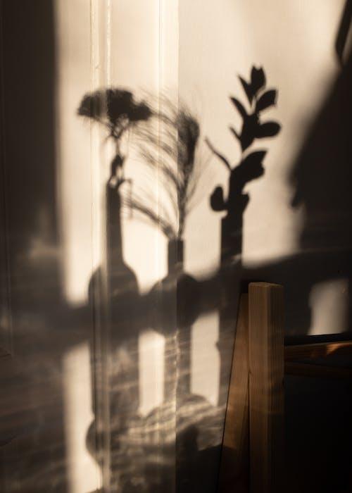 Grayscale Photo of Plant Near Window