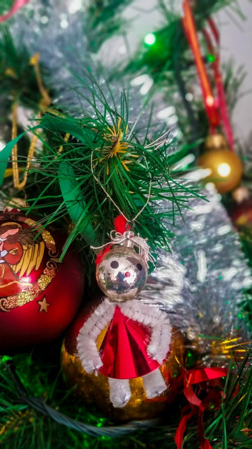 ağaç, Noel, Polonya içeren Ücretsiz stok fotoğraf