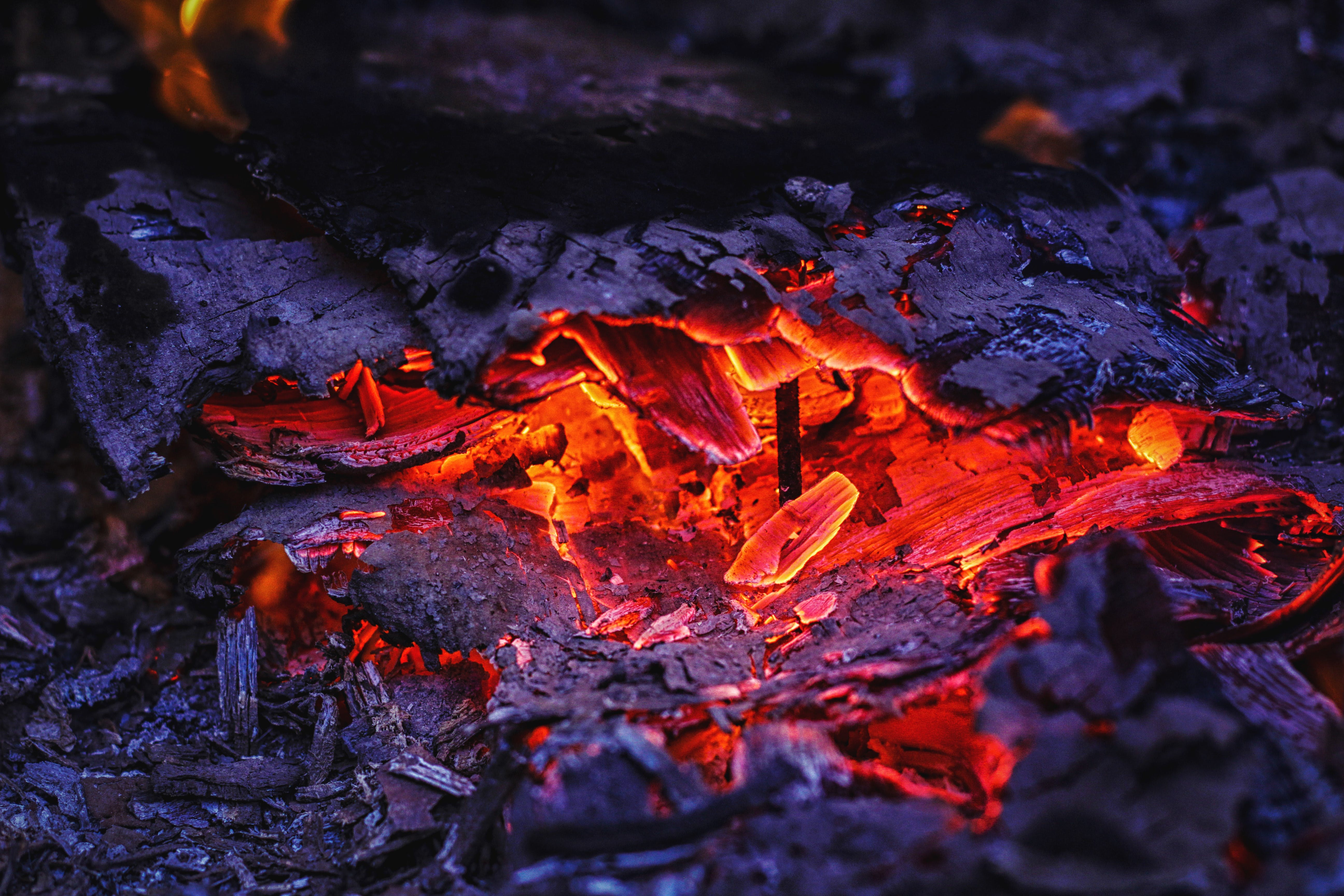 Free stock photo of bonfire, fire