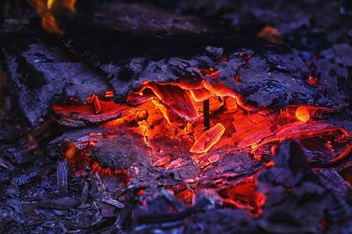 Foto profissional grátis de fogo, fogueira