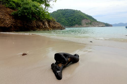 Free stock photo of beach, by the sea, costa rica