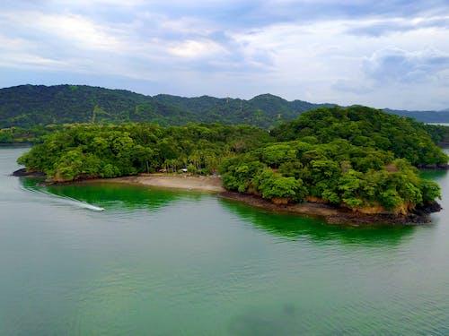 哥斯達黎加, 天性, 太平洋 的 免費圖庫相片