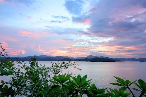 deniz kenarı, doğal, gün batımı, kosta rika içeren Ücretsiz stok fotoğraf