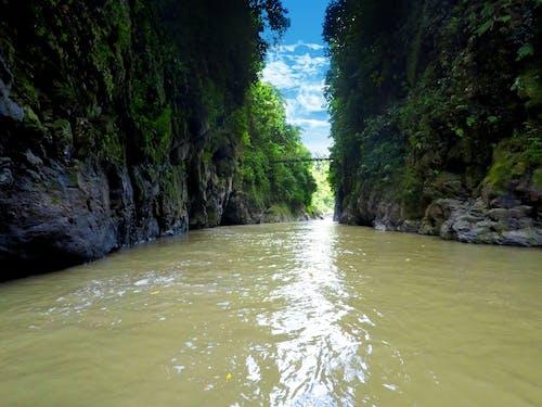 doğa, kosta rika, rafting içeren Ücretsiz stok fotoğraf