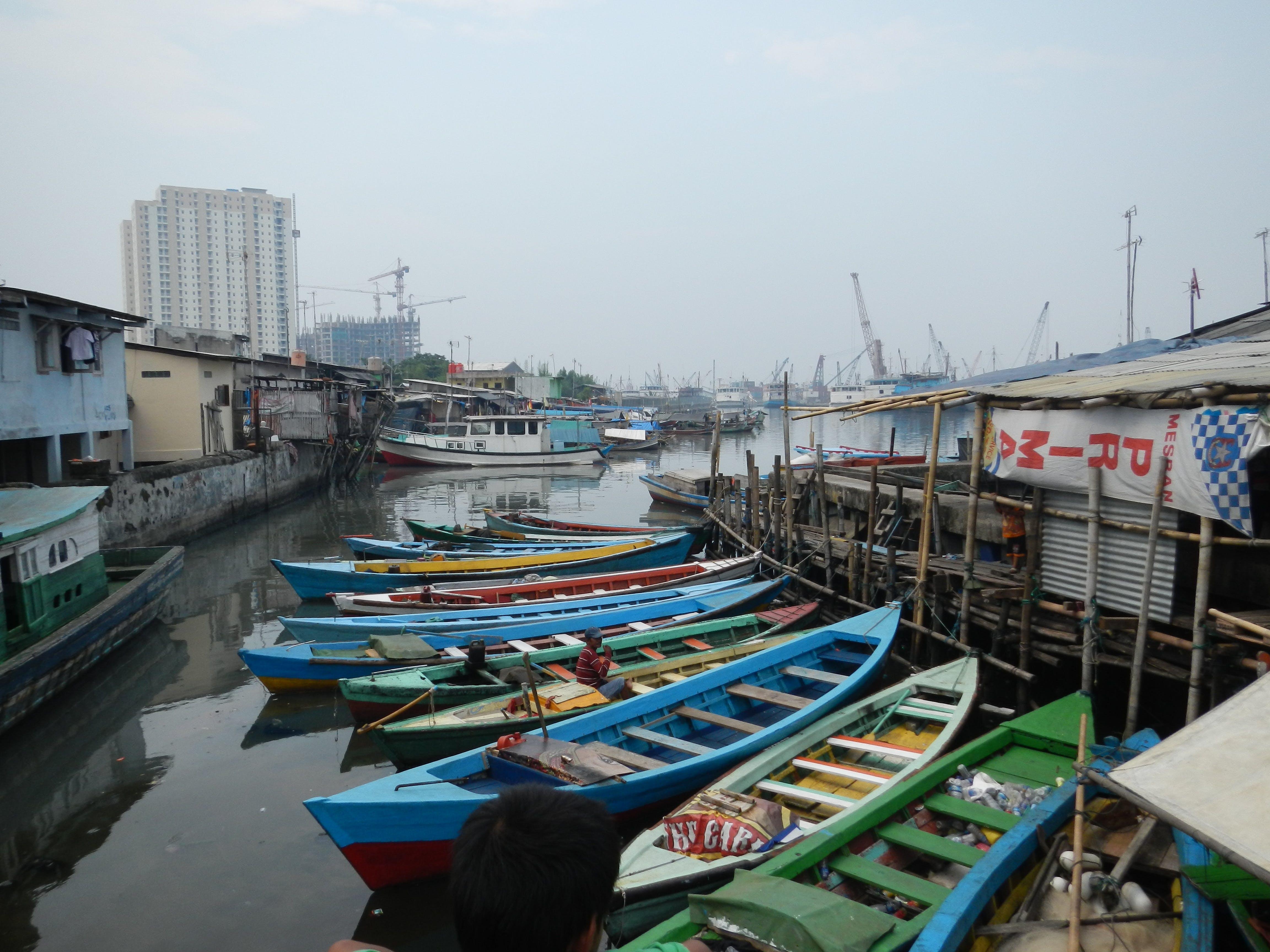 Free stock photo of fishing boat, harbor, sea
