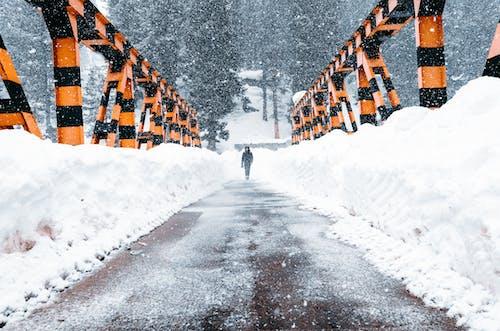 Man walking on asphalt path along snowdrifts