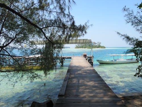 Free stock photo of dock, sea