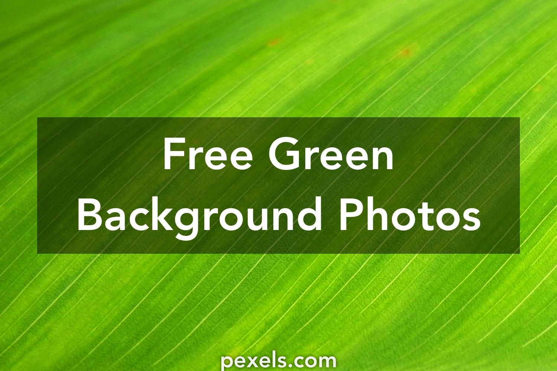 1000 Beautiful Green Background Photos Pexels Free Stock