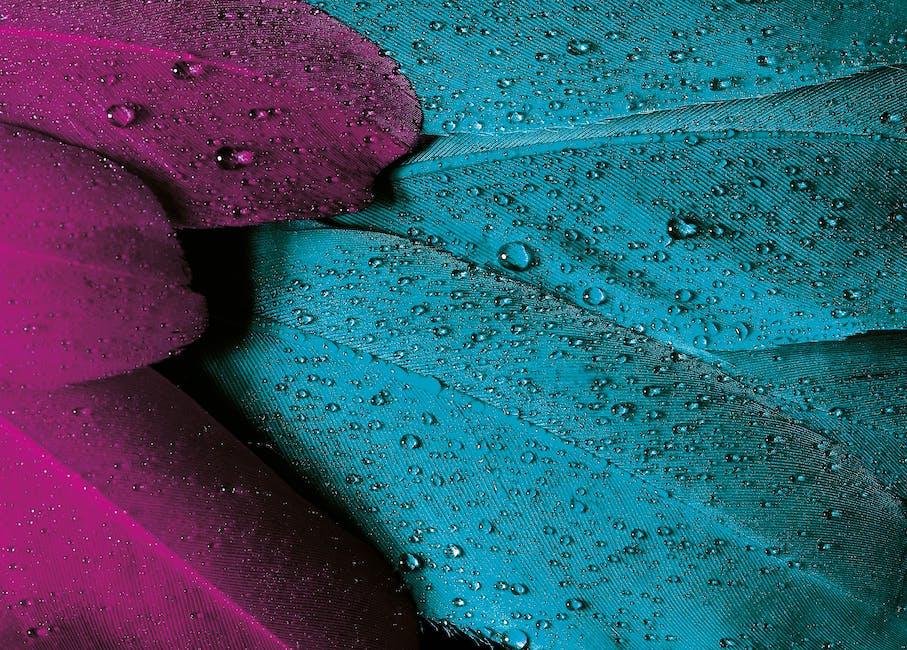 Bird drop of water pink background
