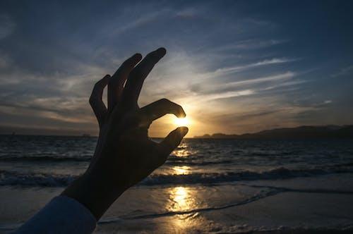 손, 일몰, 초상화의 무료 스톡 사진