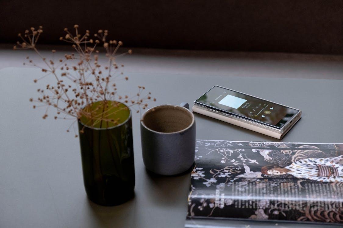Kostenloses Stock Foto zu blatt, blumenvase, container
