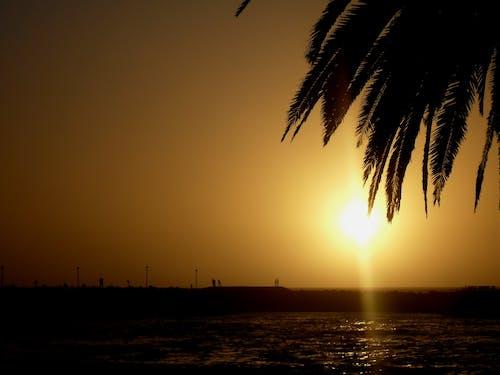 Kostnadsfri bild av hav, himmel, människor, Sol