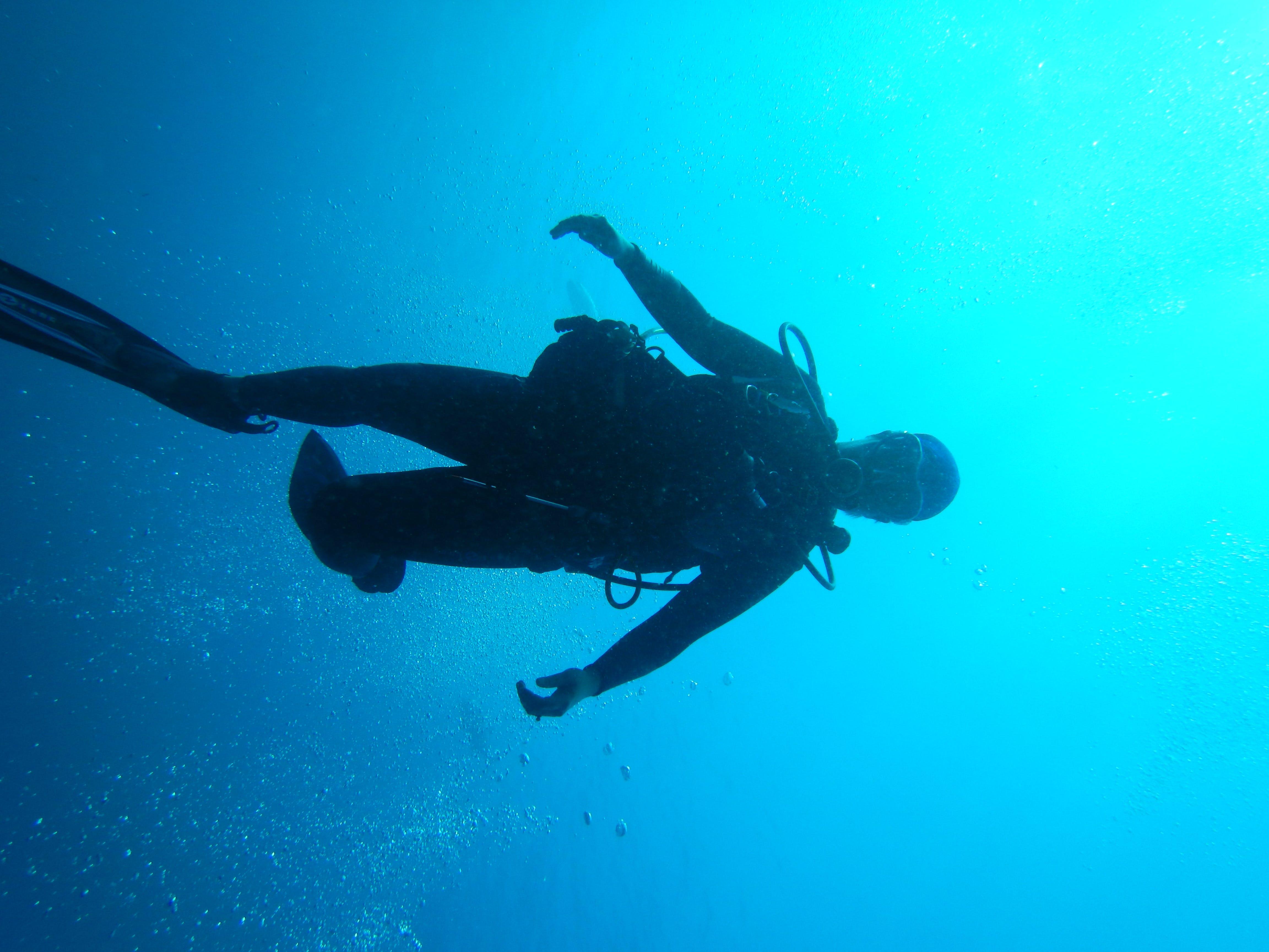 people, scuba diver, sea