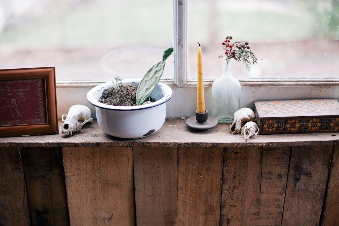 Безкоштовне стокове фото на тему «ваза, вікно, Деревина»