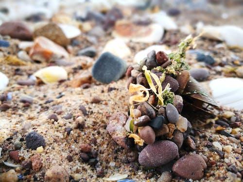 모래, 자갈, 조약돌 해변, 해변의 무료 스톡 사진