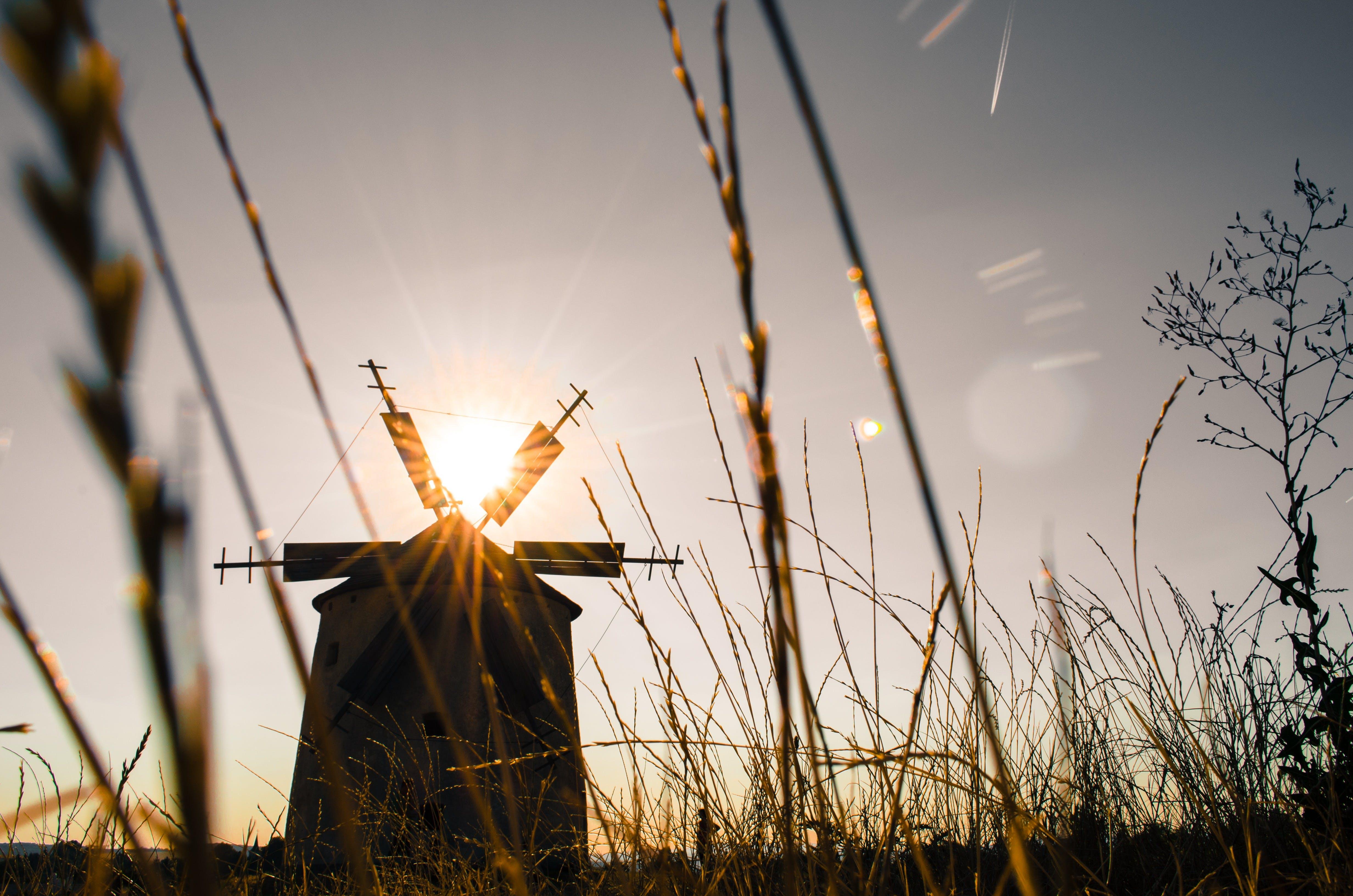 Ảnh lưu trữ miễn phí về cỏ, cối xay gió, góc chụp thấp, tia nắng mặt trời