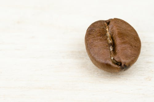 Ingyenes stockfotó aroma, aromás, bab, barna témában