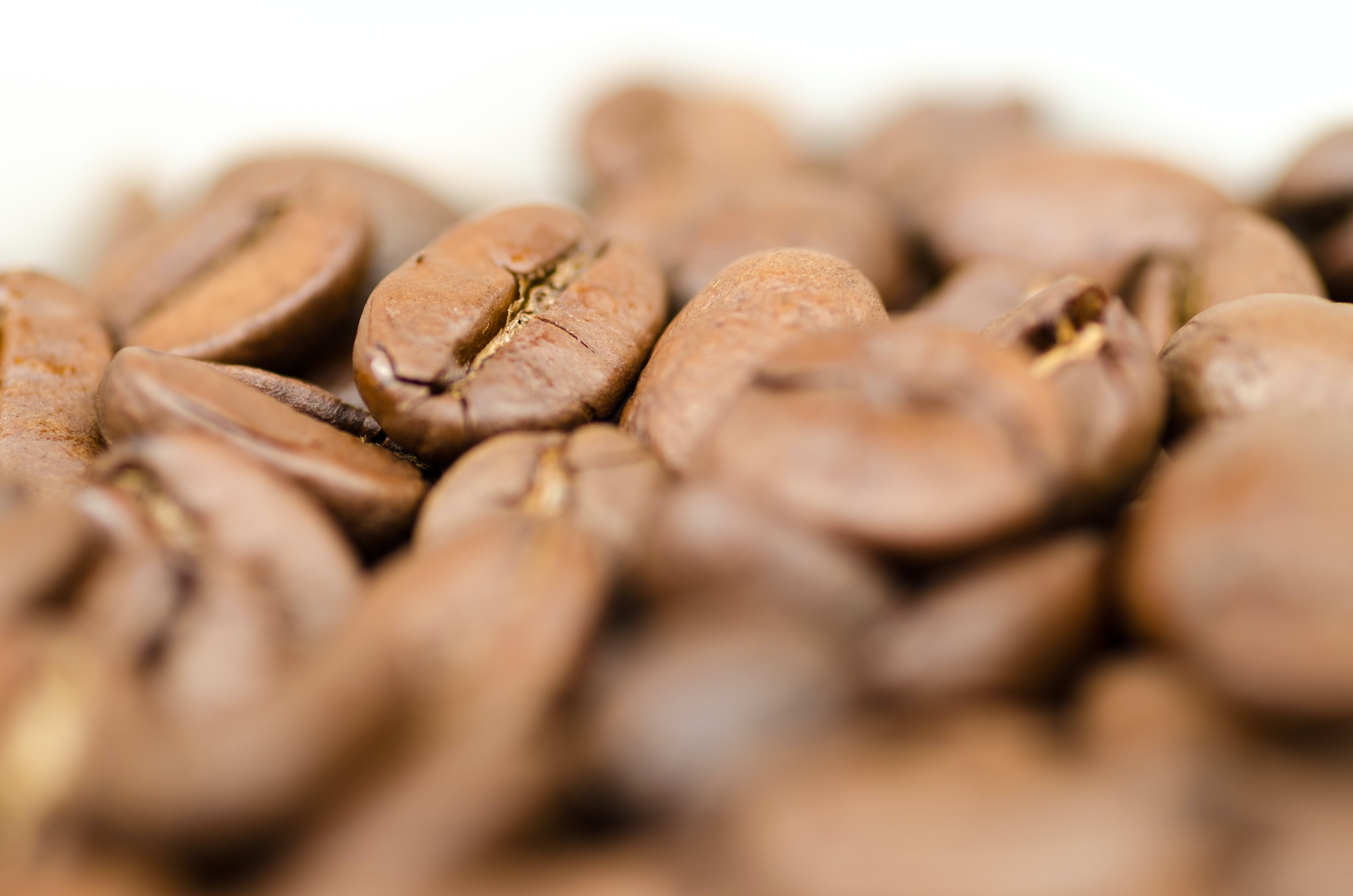 Closeup Photography of Coffee Beans