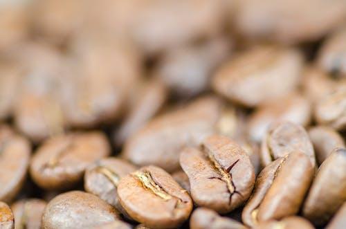 Foto d'estoc gratuïta de àrab, aroma, aromàtic, cafè