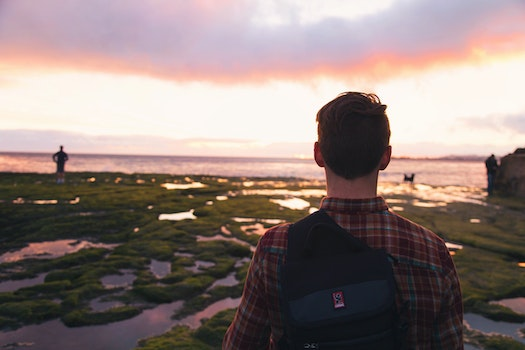 Free stock photo of sea, sunset, man, person