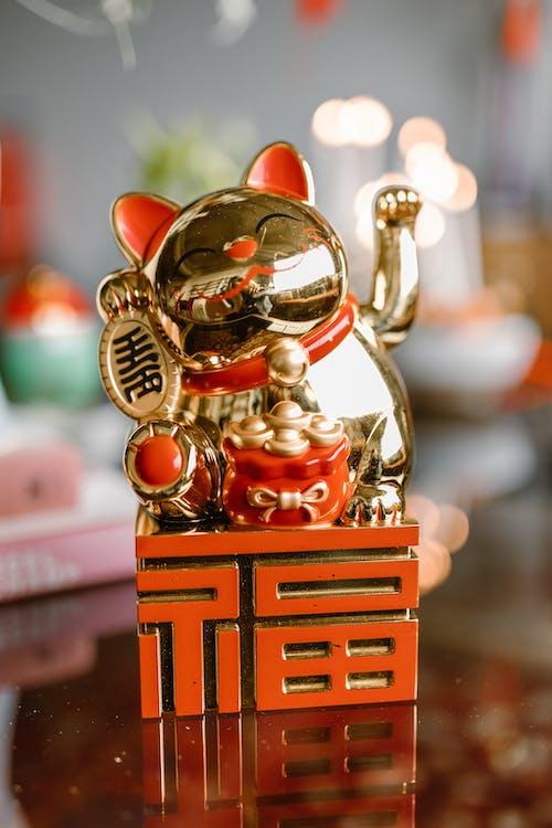 คลังภาพถ่ายฟรี ของ cny, imlek, กลางแจ้ง
