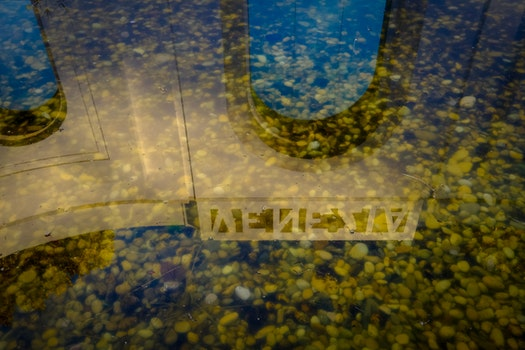 Free stock photo of Venice Biennale reflection water yellow