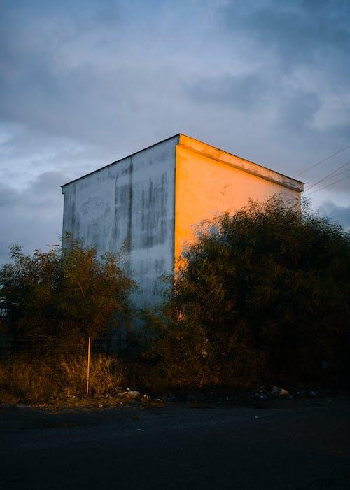 Free stock photo of colors, light, orange