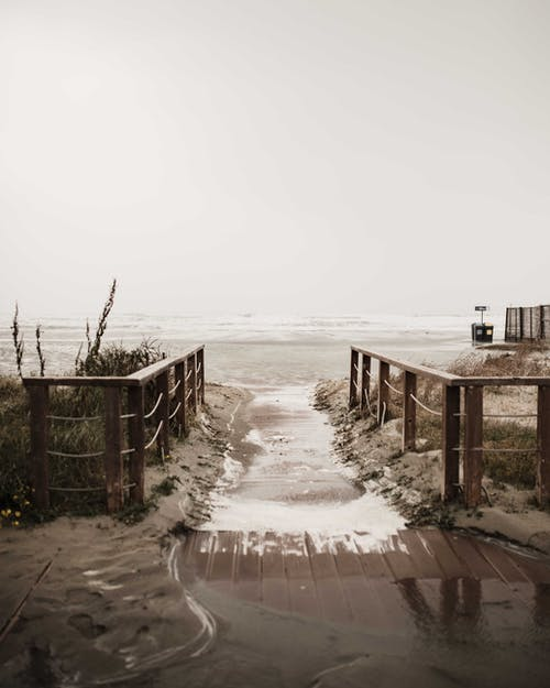 Brown Wooden Fence on Beach