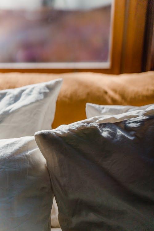 Soft pillows placed on sofa near window
