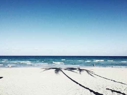 Ảnh lưu trữ miễn phí về biển, bờ biển, cát, chân trời
