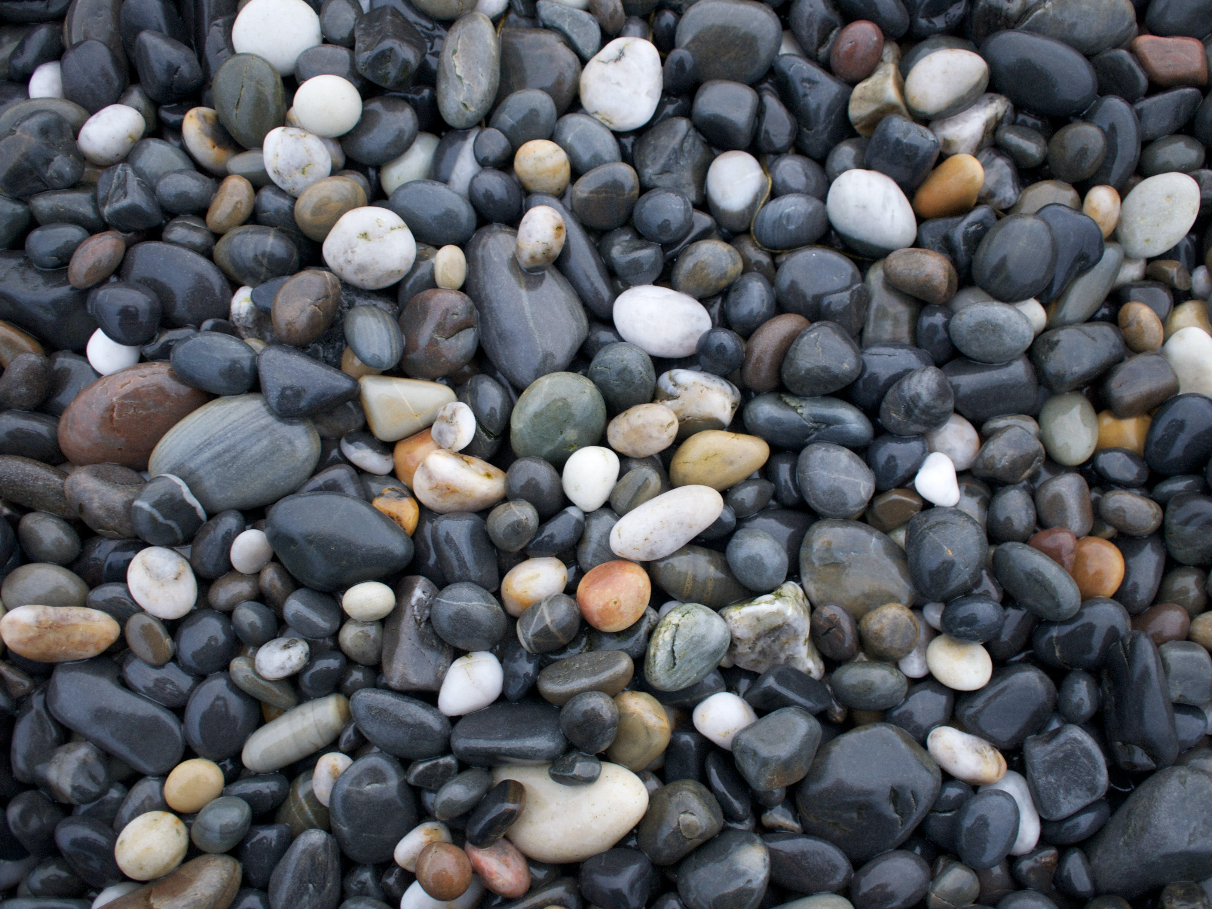 Free stock photo of rocks