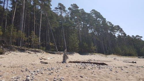 Free stock photo of Baltic Sea