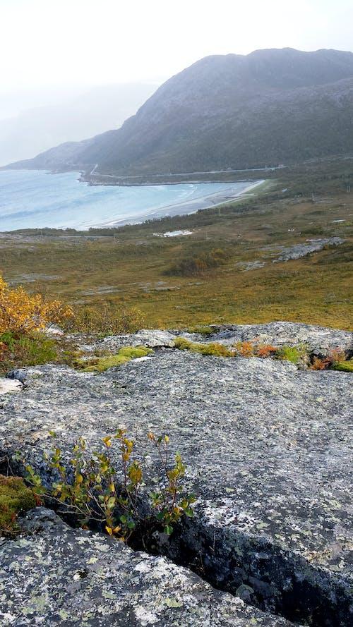 Gratis arkivbilde med bukt, fjell, fjord