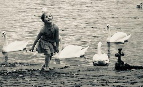 Imagine de stoc gratuită din alb-negru, apă, copil, distracție