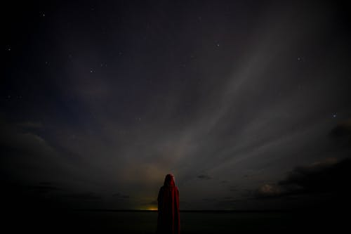 Anonymous traveler standing near sea under starry night sky