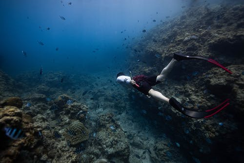 Side view of anonymous male diver in flippers swimming under clear water of ocean near picturesque coral reefs and exotic fishes