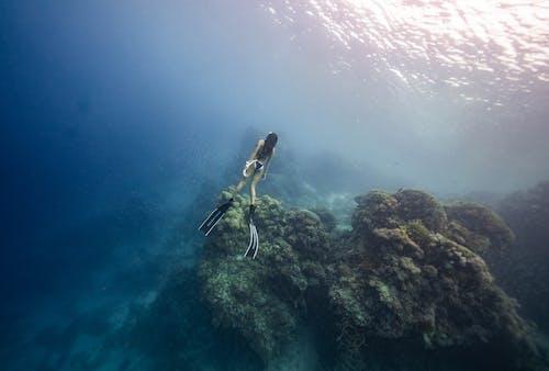 Unrecognizable lady diving in blue sea near corals in sunlight