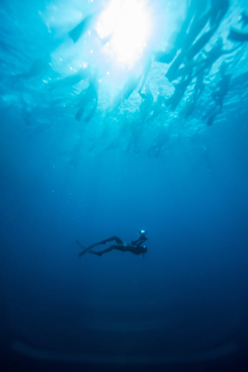 Side view of unrecognizable diver in flippers swimming in deep blue sea in sunny day