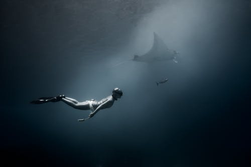 Side view of anonymous diver in diving suit swimming in dark deep waters of ocean with shark