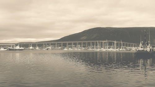 Gratis arkivbilde med båt, bro, hav