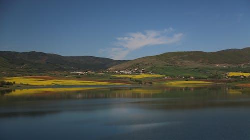 Gratis stockfoto met bergen, bloemen, bulgarije, h2o