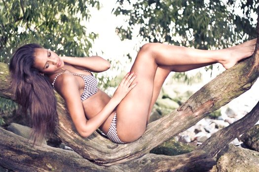 Woman Wearing Bikini on Tree Branch