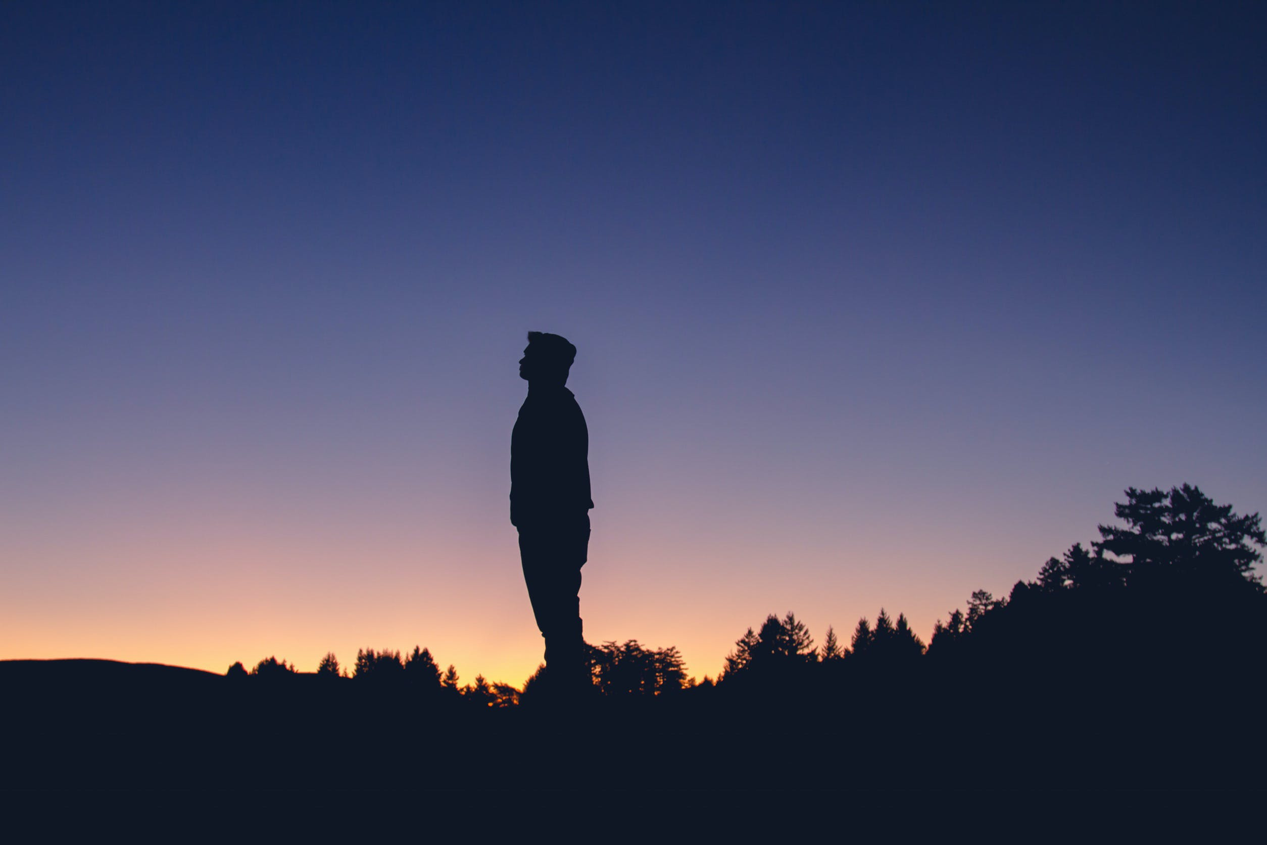 Free stock photo of nature, sunset, man, person