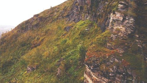 Gratis arkivbilde med busker, fjell, fjellklatring
