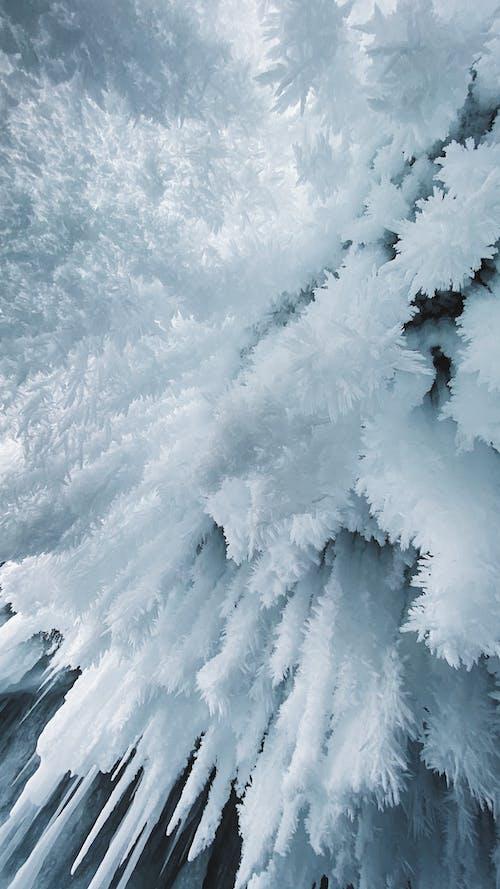 Безкоштовне стокове фото на тему «байкал»