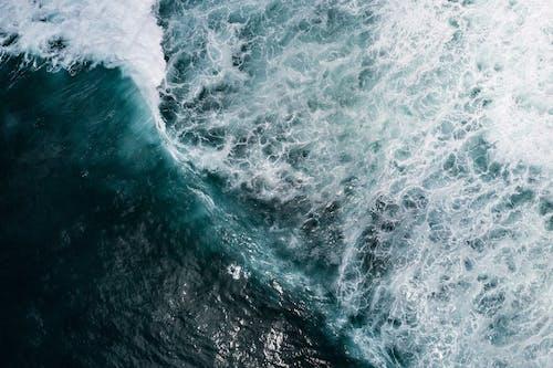 Gratis lagerfoto af abstrakt, bevægelse, bølge