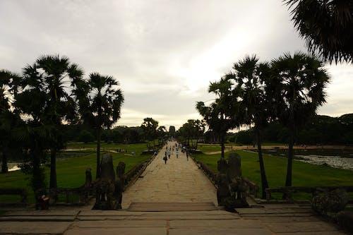 Free stock photo of angkor wat, cambodia, sunset