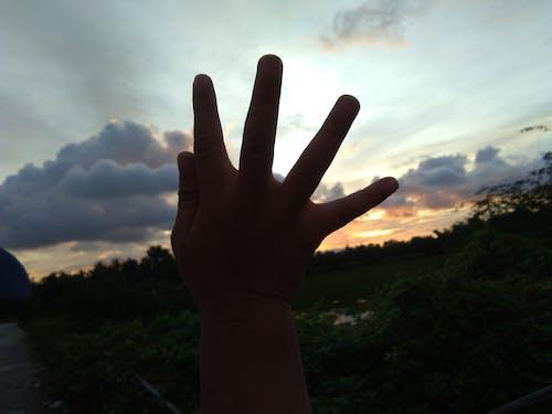 Free stock photo of child's hand, dark, enjoy, sunset
