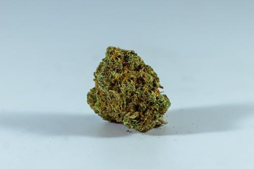 Close Up Photo of Green Hemp