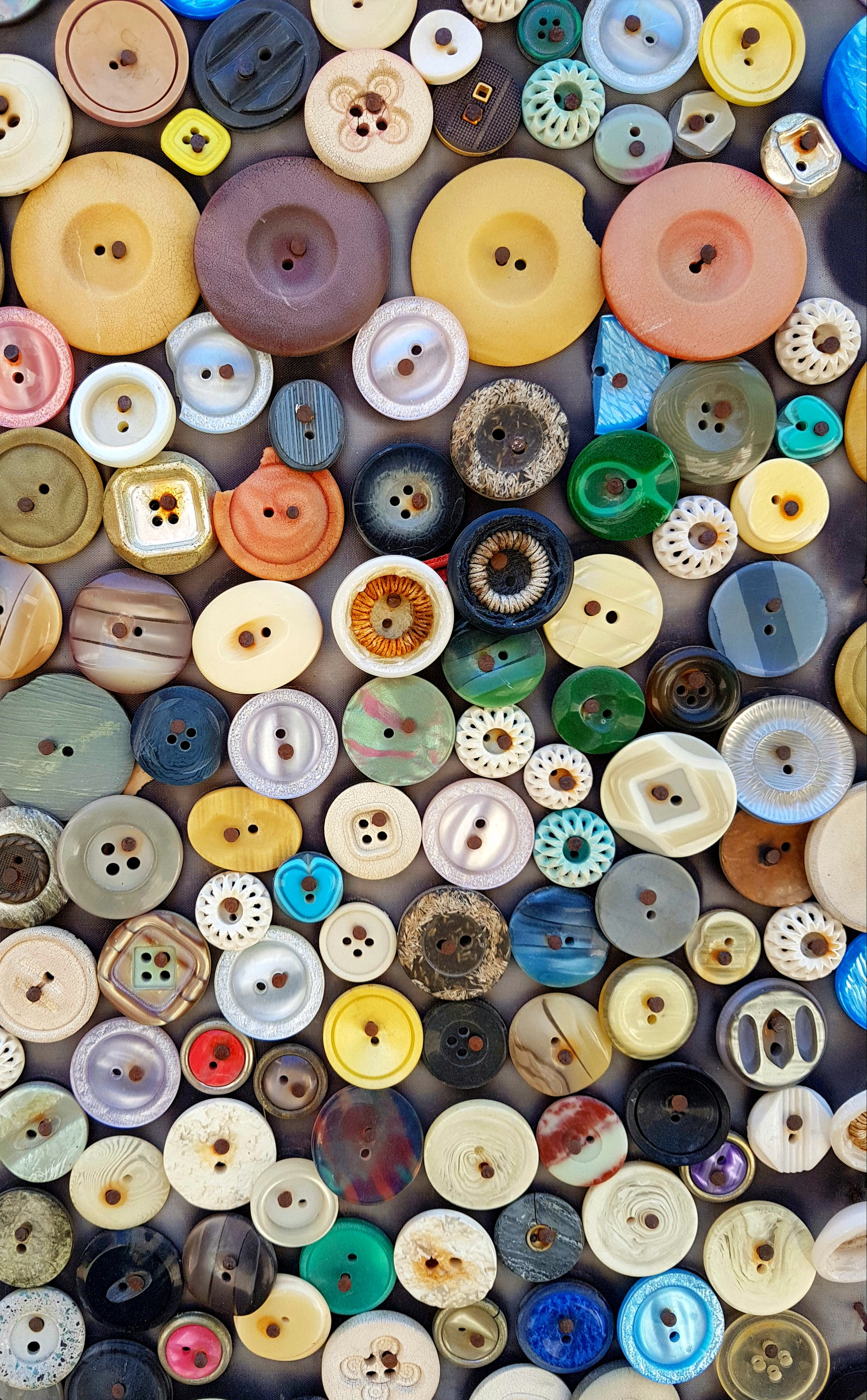 Free stock photo of button, buttons, color, colour